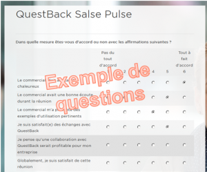 Sales-pulse-exemple-de-question